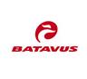 logo betavus